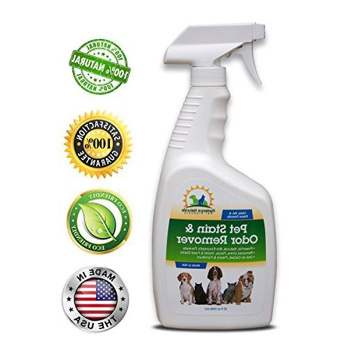 All Natural Professional Strength Pet Stain And Odor Remover