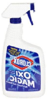 Clorox/Home Cleaning 04587 Stain Remover, 22OZ