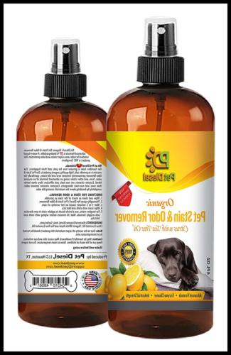 Pet Stain & Remover Of Dog Stains