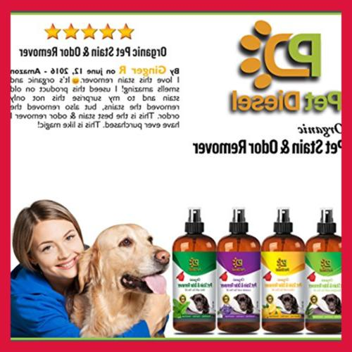 Pet Stain & Remover Spray Of Dog Stains Orga