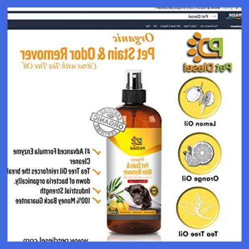 Pet Remover For Elimination Of Cat Stains
