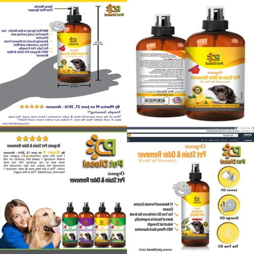 pet stain and odor remover spray