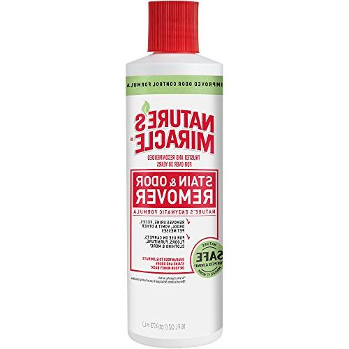 stain odor remover w enzymatic